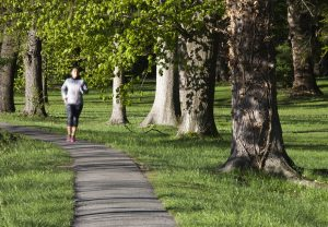 Why not take a short walk – or run – through the park on this circular route?