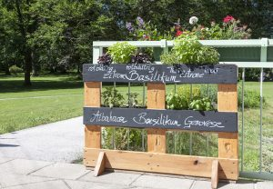 Our newly created herb garden – the herbs are planted in a wooden pallet and their names are written in elegant handwriting with white chalk on boards that were painted with blackboard paint